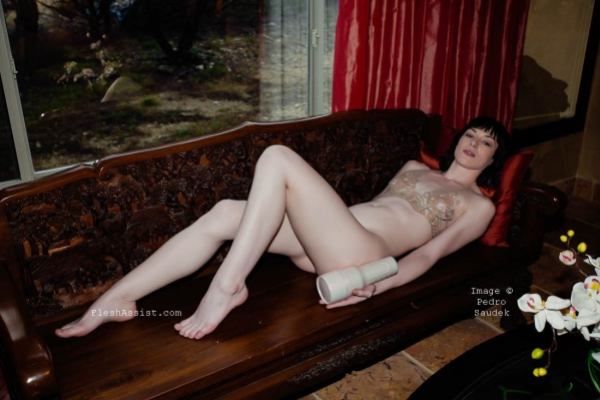 Stoya Sofa and Window Image 3