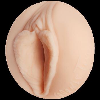 Alexis Texas' Pussy Orifice Image