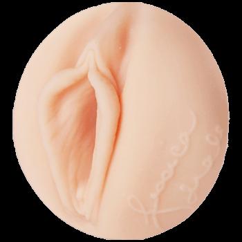 Jessica Drake's Pussy