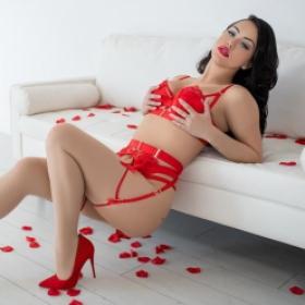 Rose Image 3
