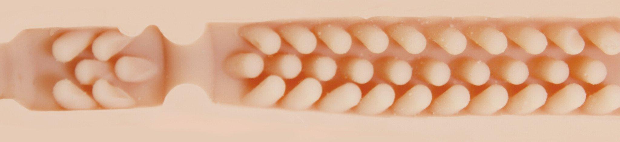 Barracuda Texture Image