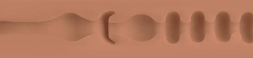Lotus Texture Image