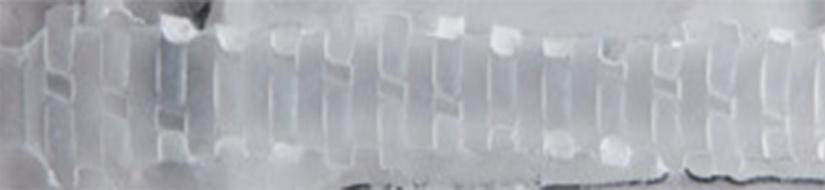 Spiral Stamina Flight Texture Image