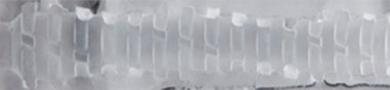 Spiral Stamina Texture Image